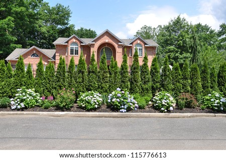 Rhododendron Flowers Spruce Pine Trees Landscaped front Yard of Beautiful Brick Luxury Home in USA - stock photo