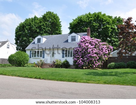 Rhododendron Flowers Suburban Cape Cod Style Home Residential Neighborhood - stock photo