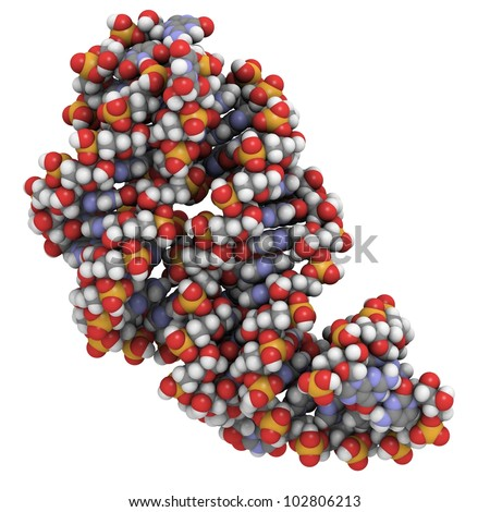Riboswitch RNA molecule: Chemical structure of a bacterial guanine riboswitch bound to hypoxanthine. Riboswitches are regulatory parts of messenger RNA that can bind small molecules. - stock photo
