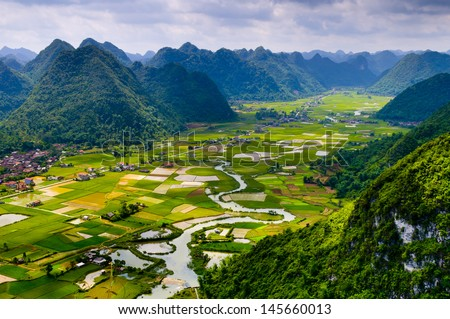 Rice field in valley in Vietnam  - stock photo