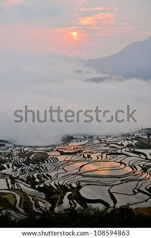 Rice fields, Yuanyang, China - stock photo