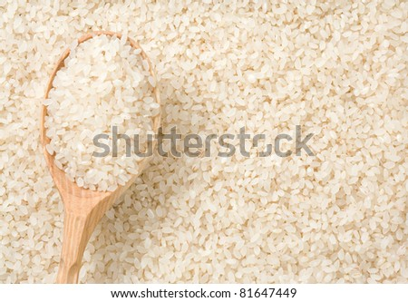 rice grain background and wood spoon - stock photo