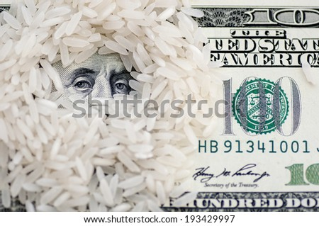 Rice grains on one hundred dollars - stock photo