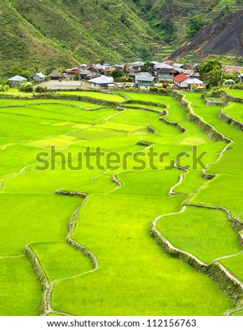 Rice terrace in Cordillera mountains, Philippines - stock photo