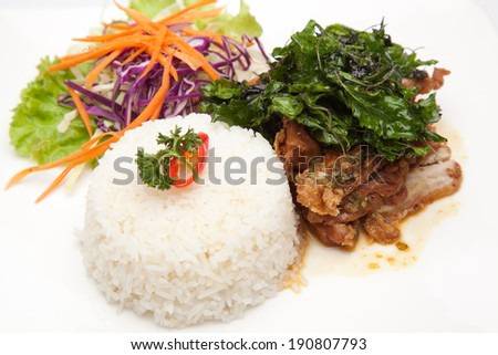Rice with chicken basil - stock photo