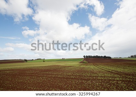 Rich dark soil farmland with ploughed paddocks, Table Cape, Tasmania, Australia - stock photo