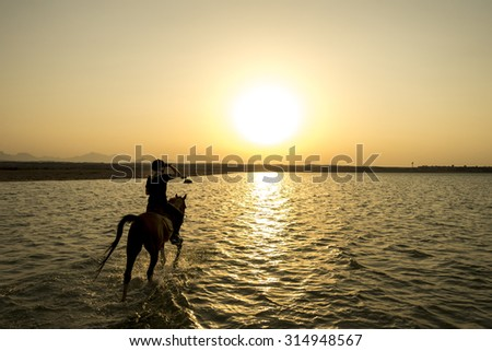 ride off into the sunset in egypt, focus at the horse/rider - stock photo