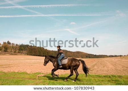 Rider gallops across the field. Hanoverian - stock photo