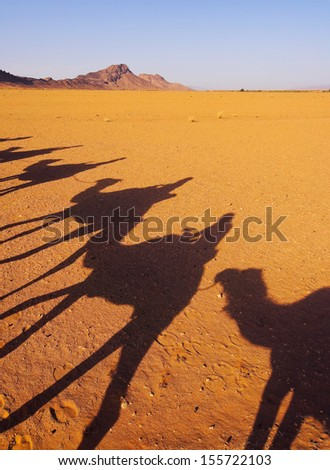 Riding Camels on Zagora Desert in Morocco, Africa - stock photo