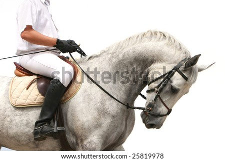 riding competition. jokey on dressage horse. - stock photo