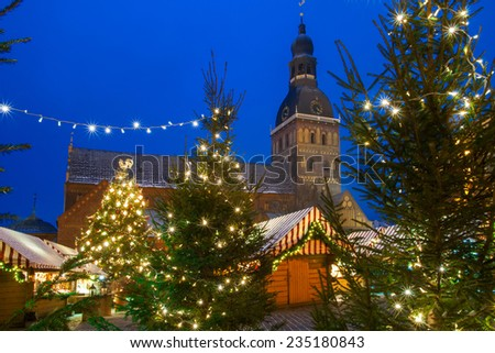 Riga cathedral in Xmas forest - stock photo