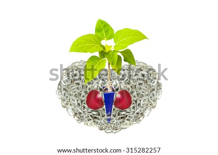 Ring pull aluminum of cans stack as heart shape and young Bodhi Tree growing inside indicate of new hope isolate on white background - stock photo