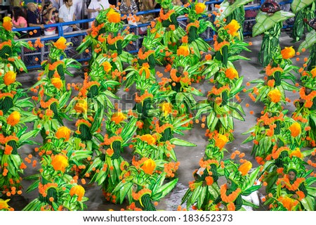 RIO DE JANEIRO - MARCH 2 : parade of samba schools special groups in Carnival 2014 on March 2, 2014 in Rio de Janeiro, Brazil. - stock photo