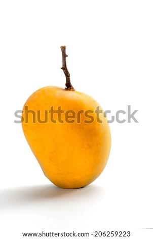 Ripe Alphonso Mango - King of fruits - stock photo
