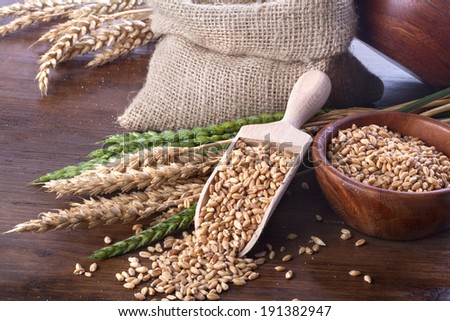 Ripe and green wheat in a linen bag with a wooden spatula and bowl - stock photo