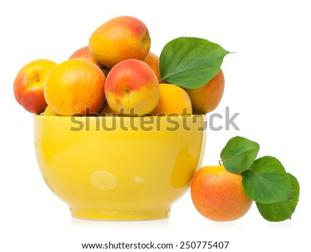 Ripe apricots in the yellow bowl isolated on a white background - stock photo