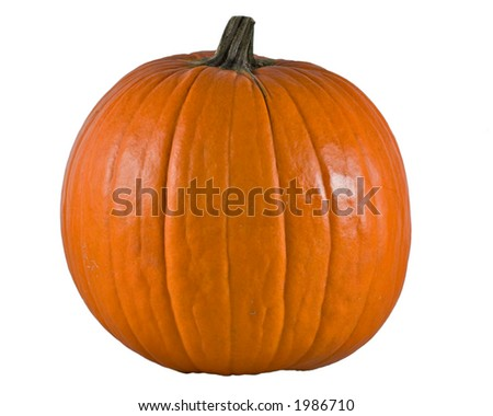 Ripe big pumpkin isolated - stock photo