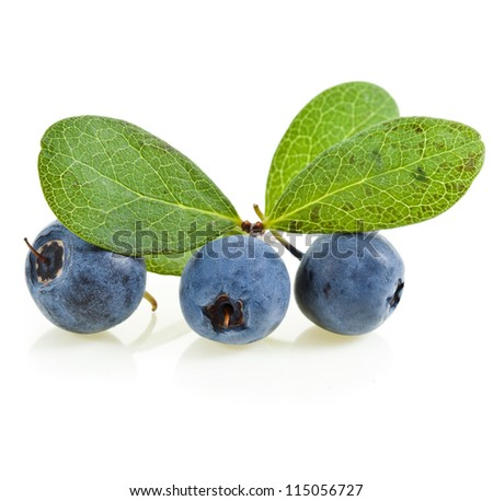 ripe blueberries with green leaves close up macro isolated on white background  - stock photo