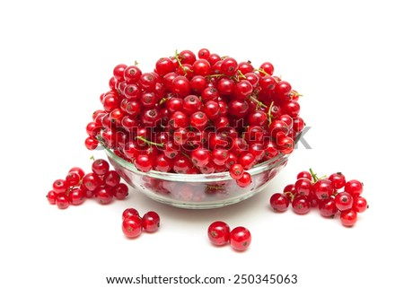 ripe bunches of juicy red currant isolated on white background. horizontal photo. - stock photo