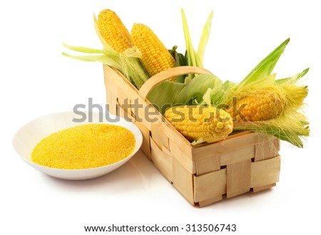 Ripe corn with green leaves and a plate of maize flour in the wooden box isolated on white background - stock photo