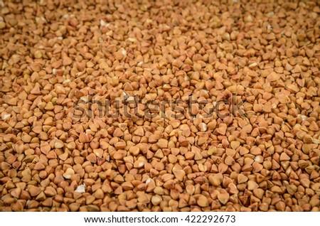 ripe dry buckwheat shot as background - stock photo