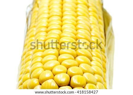 Ripe ear of corn isolated - stock photo