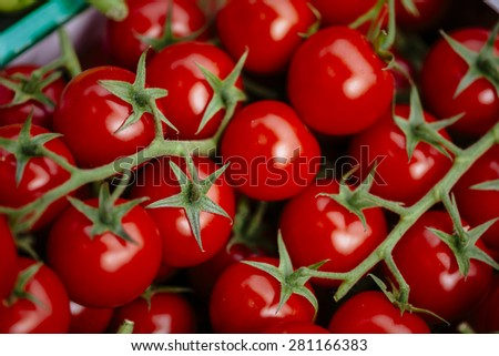 Ripe Fresh Cherry Tomatoes - stock photo