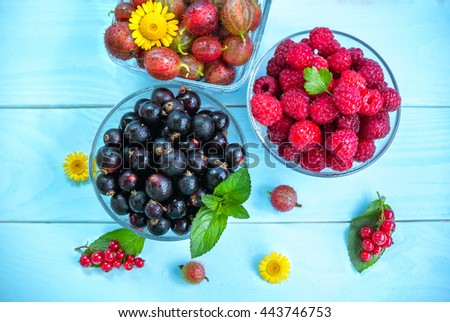 Ripe juicy berries in glass bowls on painted blue wooden background, black and red currant, raspberry, gooseberry, peppermint leaves and yellow chamomiles, summer fruits and flowers - stock photo