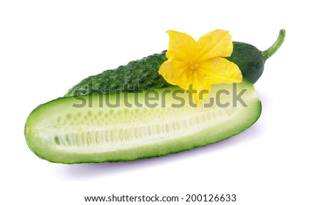 Ripe juicy cucumber on white - stock photo