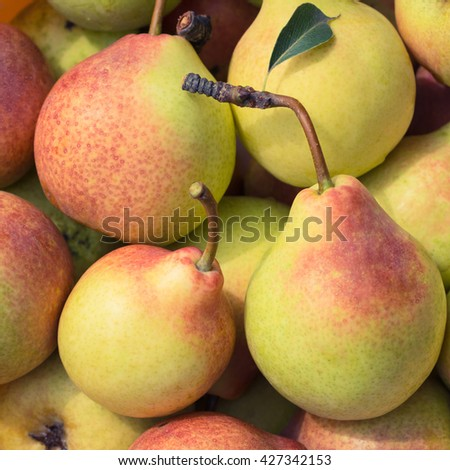 Ripe juicy pears close up as a natural background - stock photo