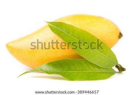 Ripe Mango fruit with leaf isolated on white background - stock photo