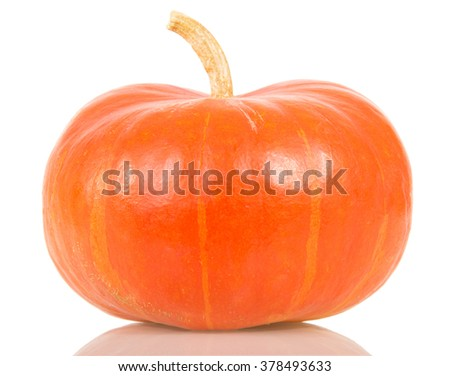 Ripe orange pumpkin isolated on white background - stock photo