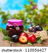 ripe plum and fresh canned plum tree in the background - stock photo