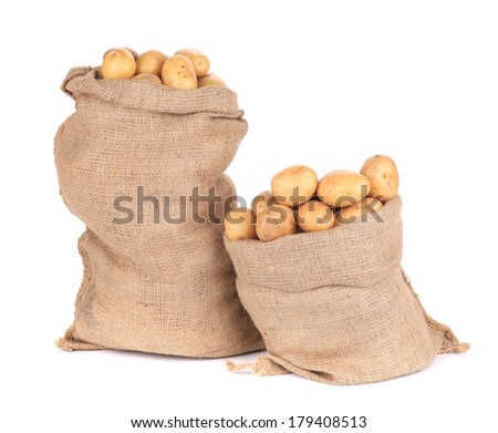 Ripe potatoes in burlap sacks. Isolated on a white background. - stock photo