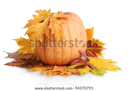 ripe pumpkin and autumn leaves isolated on white - stock photo