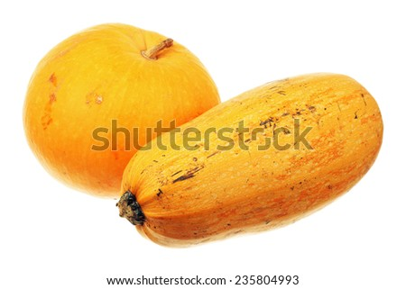 Ripe pumpkin and zucchini isolated over white background  - stock photo
