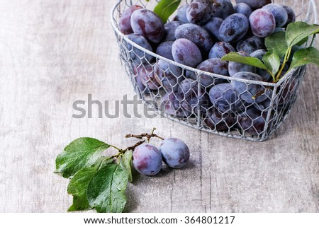 Ripe purple plums with leaves in metal decorative basket over gray wooden background. - stock photo