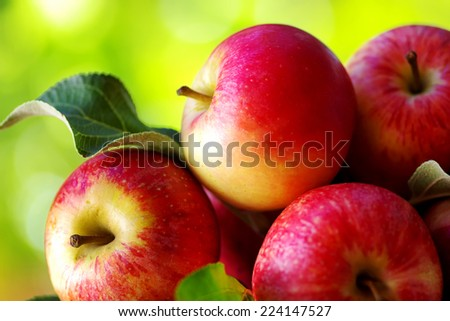 ripe red apples on table, green background - stock photo
