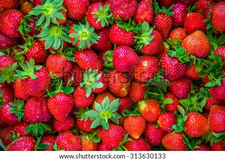 Ripe red berries of strawberry, horizontal background - stock photo