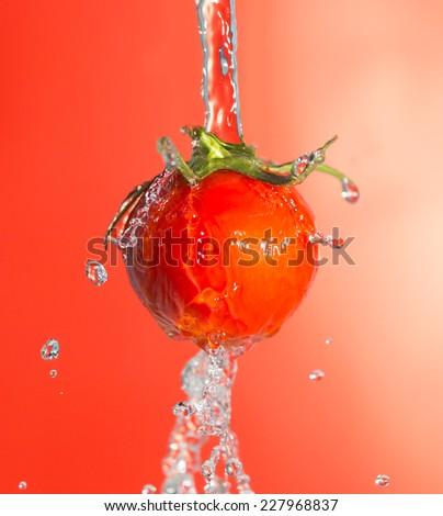 ripe tomatoes in water on a red background - stock photo