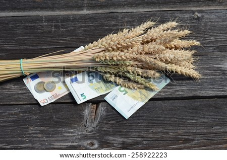 ripe wheat ears bunch and euro money banknote .agriculture harvest concept - stock photo