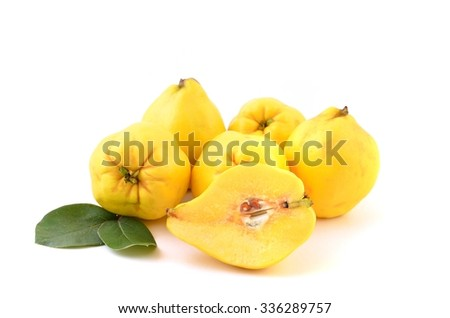 Ripe yellow quinces with leaves. - stock photo