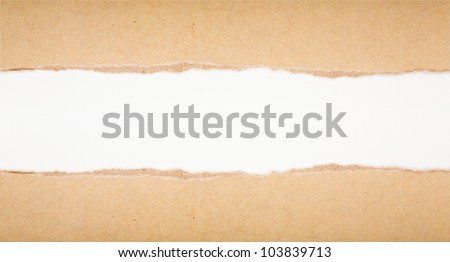 ripped in brown paper on white background - stock photo