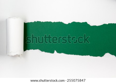 Ripped paper, space for copy green and white background - stock photo