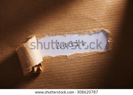 ripped paper with word audit - stock photo