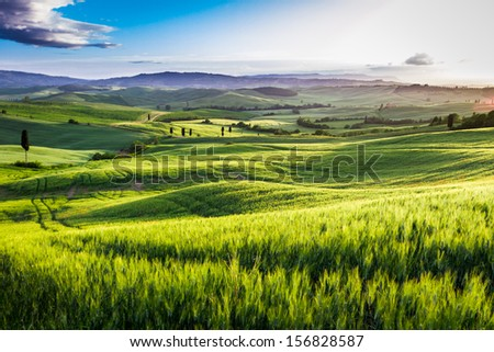 Rising fog in the valley at sunset, Tuscany - stock photo