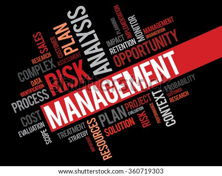 Risk Management word cloud, business concept background - stock photo