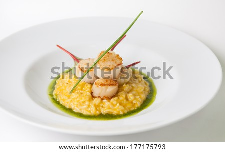 Risotto with fried scallop - stock photo
