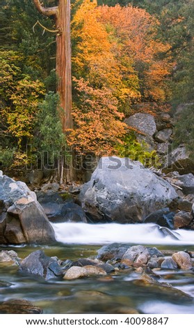 River and Trees 2 - stock photo