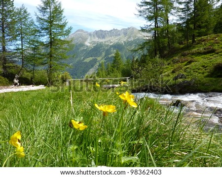 River and wooden bridge in the mountains - stock photo